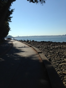 parkinsons seawall